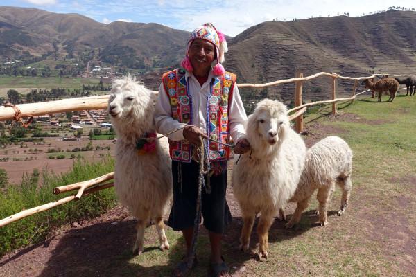 Quechuamann mit Alpaka
